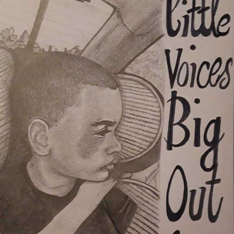Little Voices Big Outcries